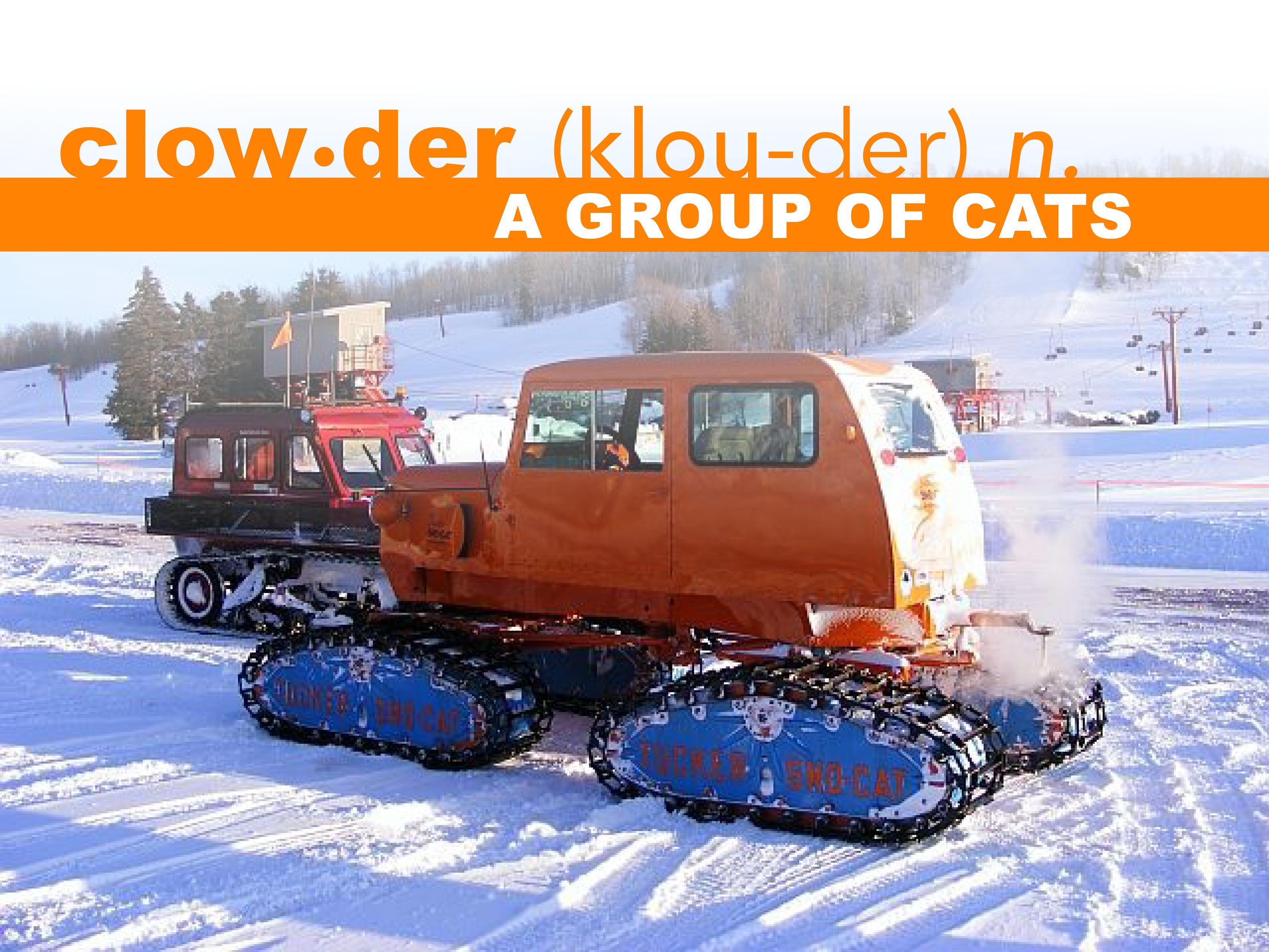 2019 Midwest Cat Clowder